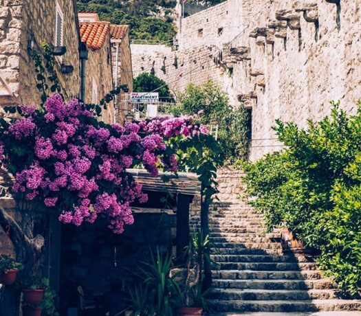Transfer from Dubrovnik to Split via Ston   Croatia Private Driver Guide